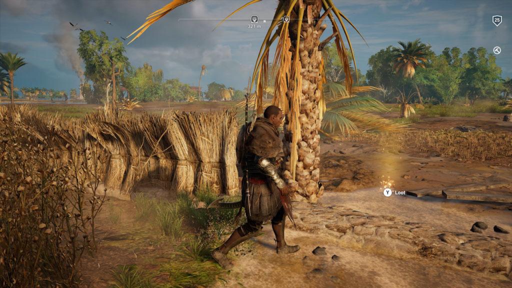 Assassin's Creed Origins - Emplacement Des Énigmes Papyrus Voie De La Nature solution